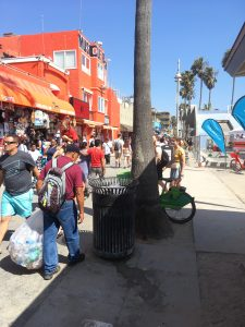 across-from-muscle-beach